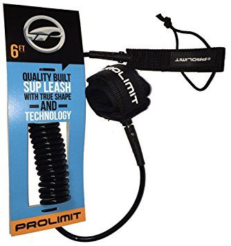 Coiled Leash/Double Swivel